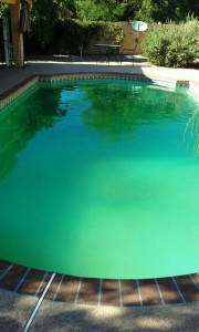 Sparkling Oasis Pool and Spa Service_green pool in Phoenix 2